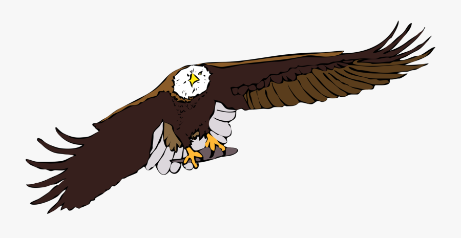 Eagle,bald Eagle,vulture - Flying Eagle Gif Cartoon, Transparent Clipart