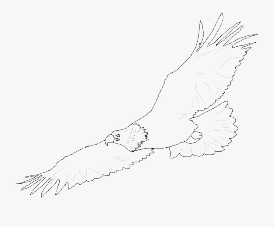 Bald Eagle Clipart Simple - Eagle Flying Lineart, Transparent Clipart