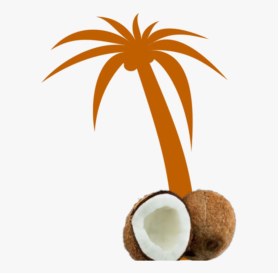 Mq Orange Palmtree Palm Coconut - Palm Tree Clip Art Blue, Transparent Clipart