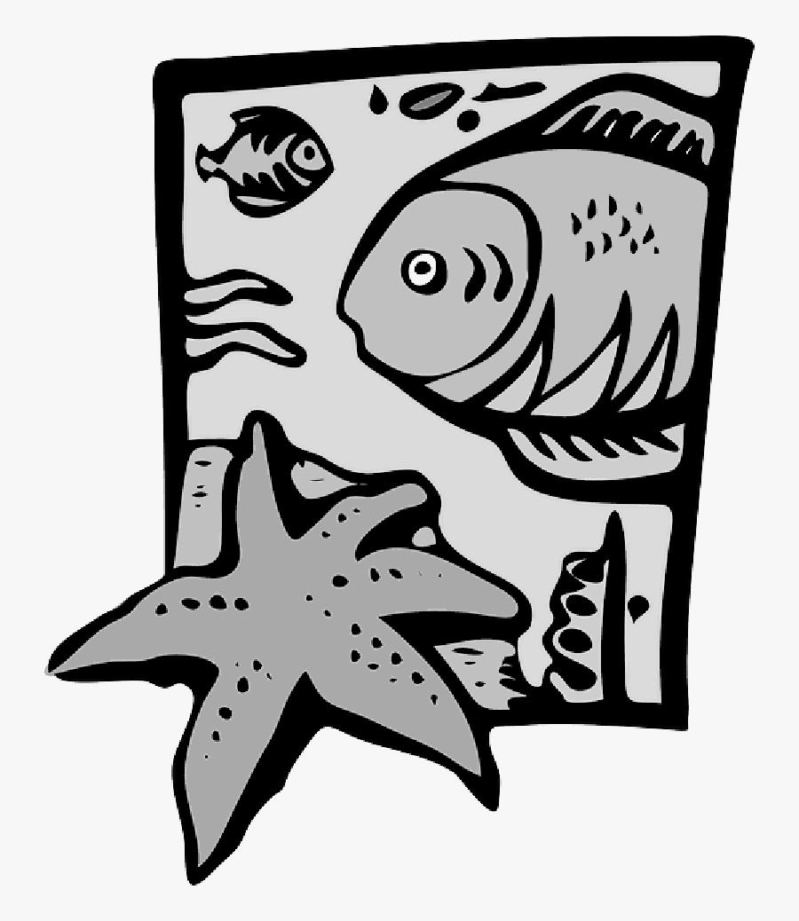 Clip Art Marine Biology , Png Download - Clip Art On Marine Life, Transparent Clipart