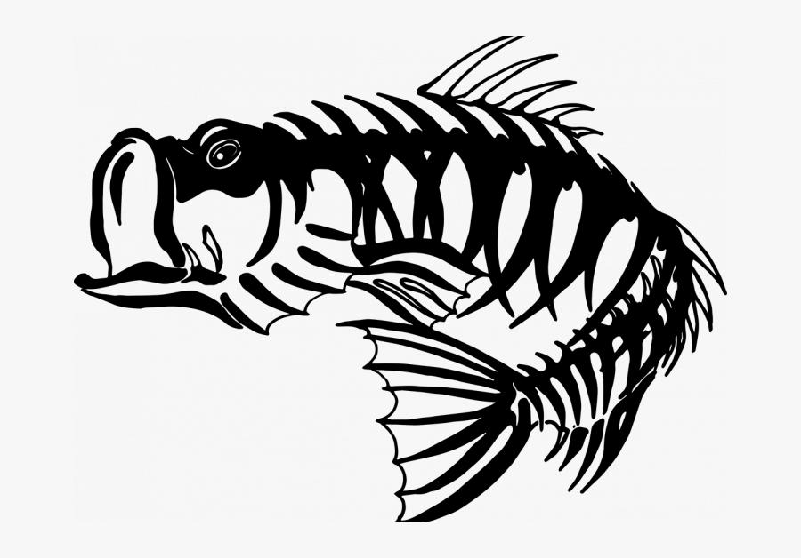 Largemouth Bass Skeleton, Transparent Clipart