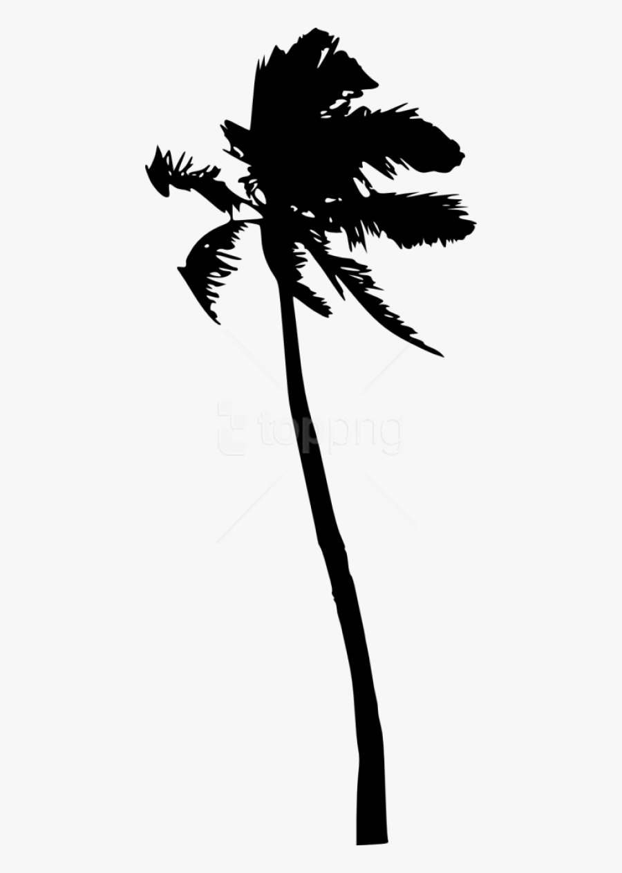 Black And Art,art - Tree Silhouette Coconut Png, Transparent Clipart