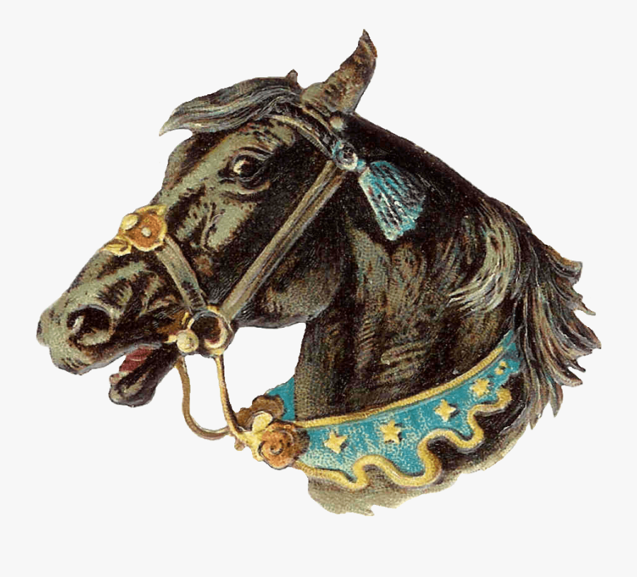 Vintage Horse Head Clip Arts - Horse Head Vintage Illustration, Transparent Clipart