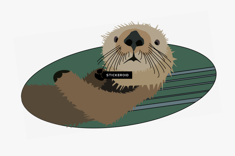 Transparent Otter Png - Sea Otter Clipart Transparent Background, Transparent Clipart