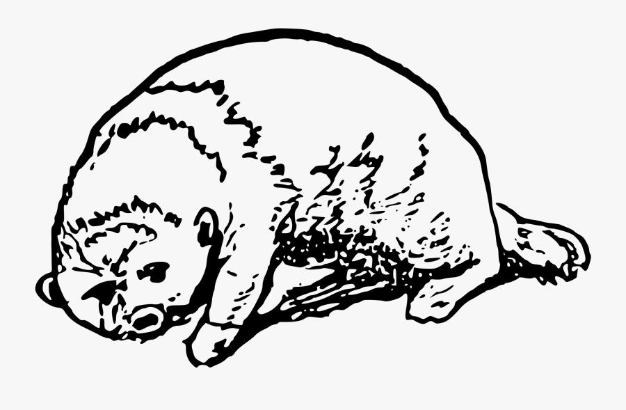 Otter Clip Arts - Otter, Transparent Clipart