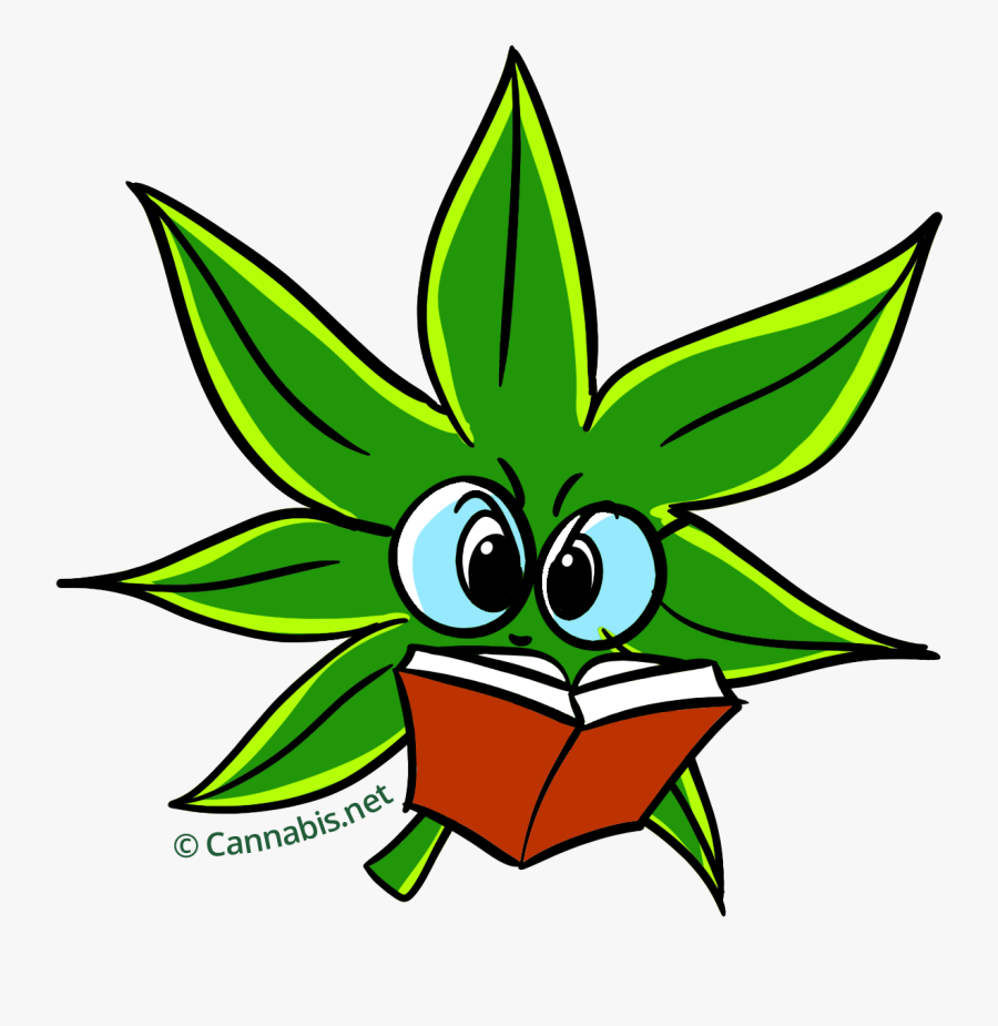 Weed Clipart Cartoon Transparent Background Weed Png Free Transparent Clipart Clipartkey