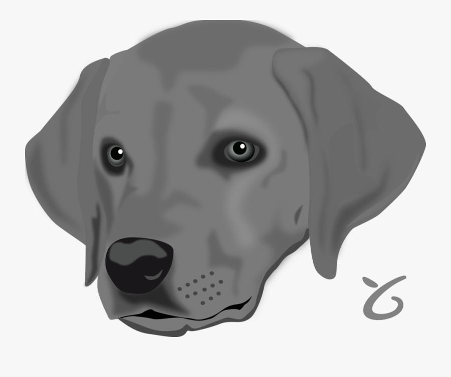 Head,puppy,weimaraner - Head Of A Dog, Transparent Clipart