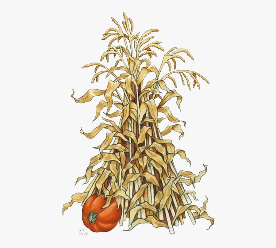 Pumpkin Drawing Maize Clip Art - Fall Corn Stalk Clip Art, Transparent Clipart
