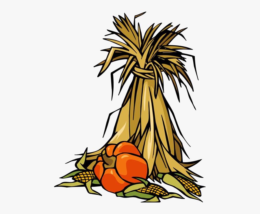 Transparent Corn Stalk Png - Fall Corn Stalk Clipart, Transparent Clipart