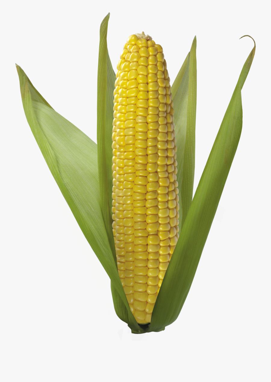 Corn Clipart - Corn Transparent Background, Transparent Clipart