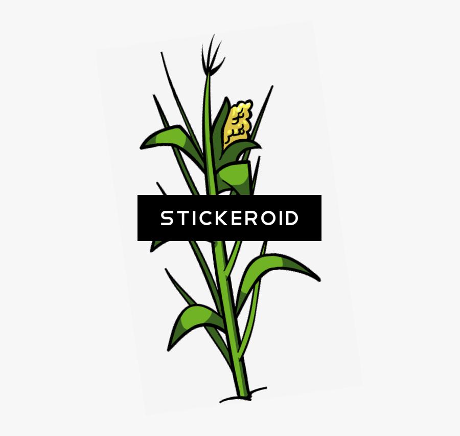 Transparent Corn Stalk Bundle Clipart - Clip Art, Transparent Clipart