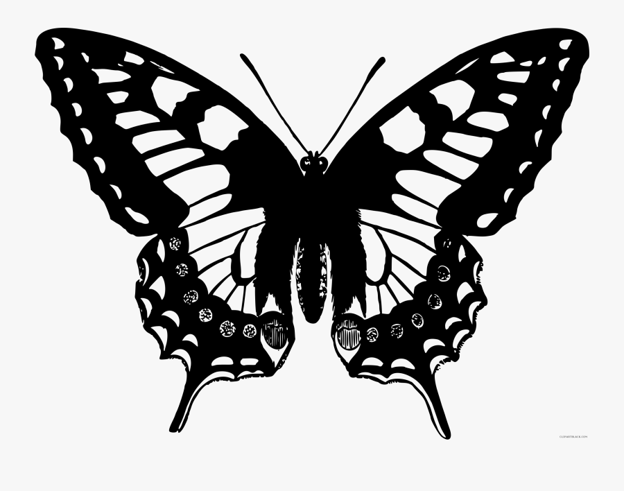 Black And White Butterfly Animal Free Black White Clipart - Swallowtail Butterfly Drawing, Transparent Clipart
