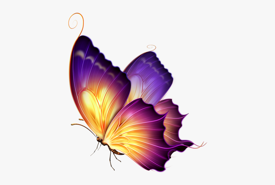 Butterfly Png For Editing, Transparent Clipart