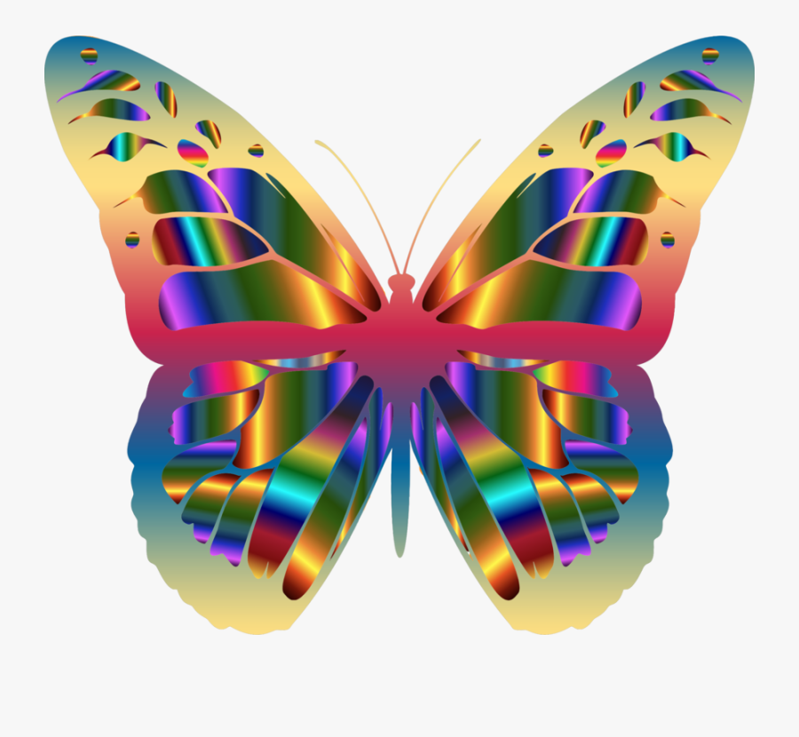 Butterfly Clipart Footed - Png Transparent Butterfly Clipart, Transparent Clipart