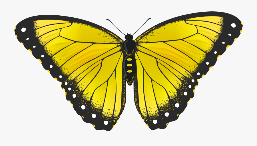 Yellow Butterfly Transparent Png Clip Art Image - Transparent Yellow Butterfly, Transparent Clipart