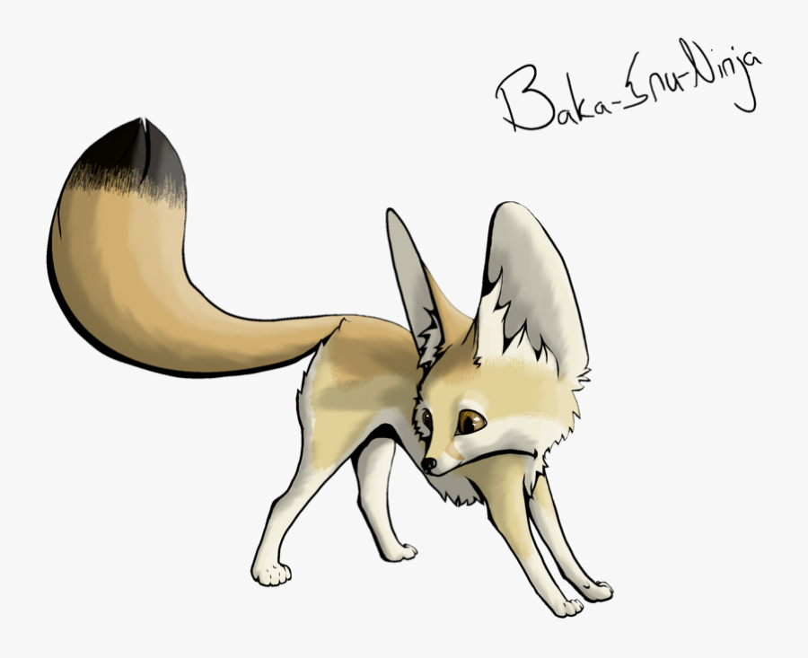 Fox Clipart Transparent Background Fennec Fox Drawing Easy