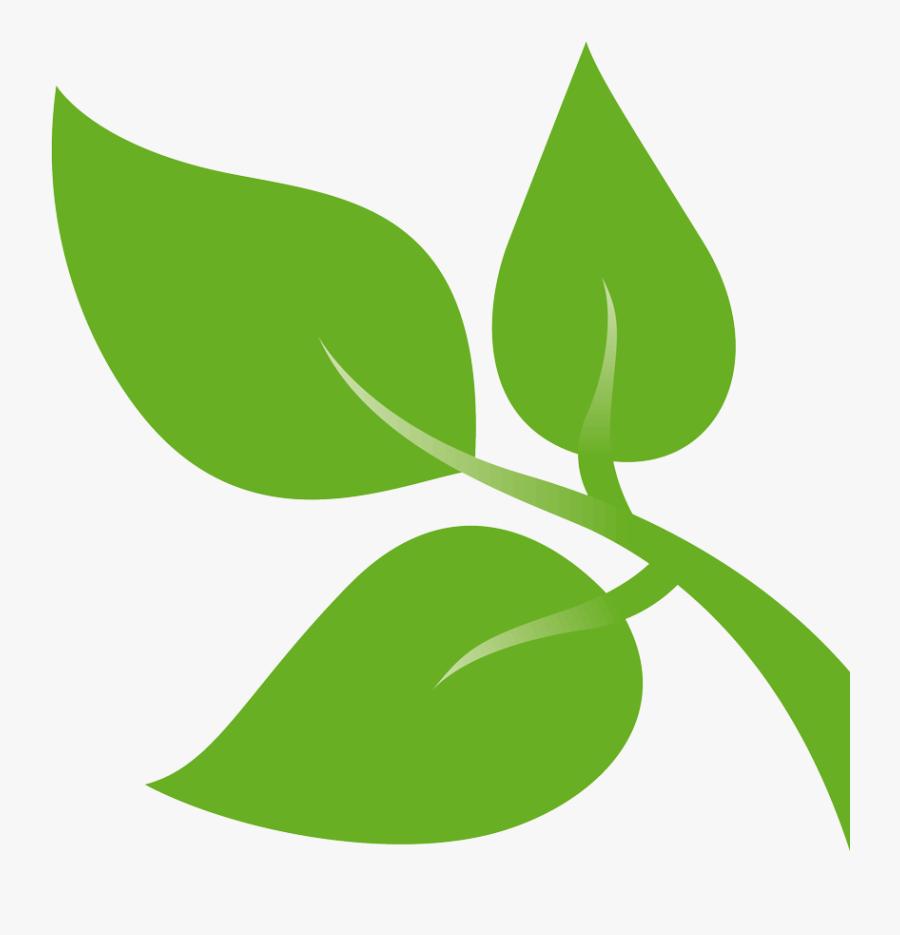 Transparent Green Design Png - Leaves Clip Art Green, Transparent Clipart