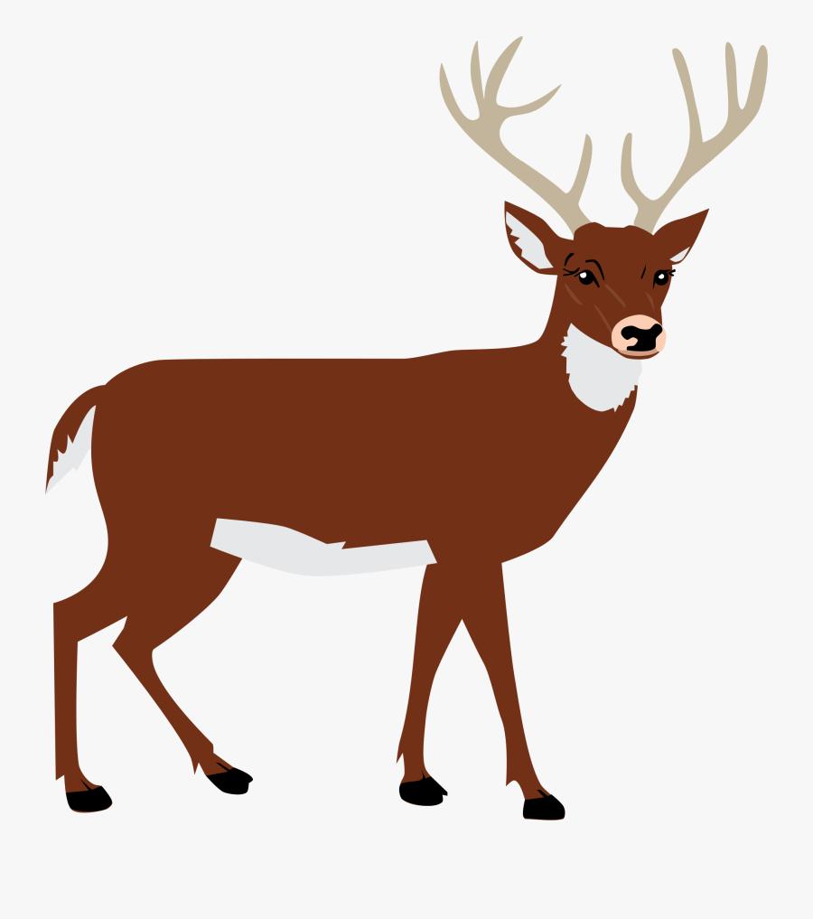 Clip Art Deer Clip Art Images - Deer Png Clipart, Transparent Clipart