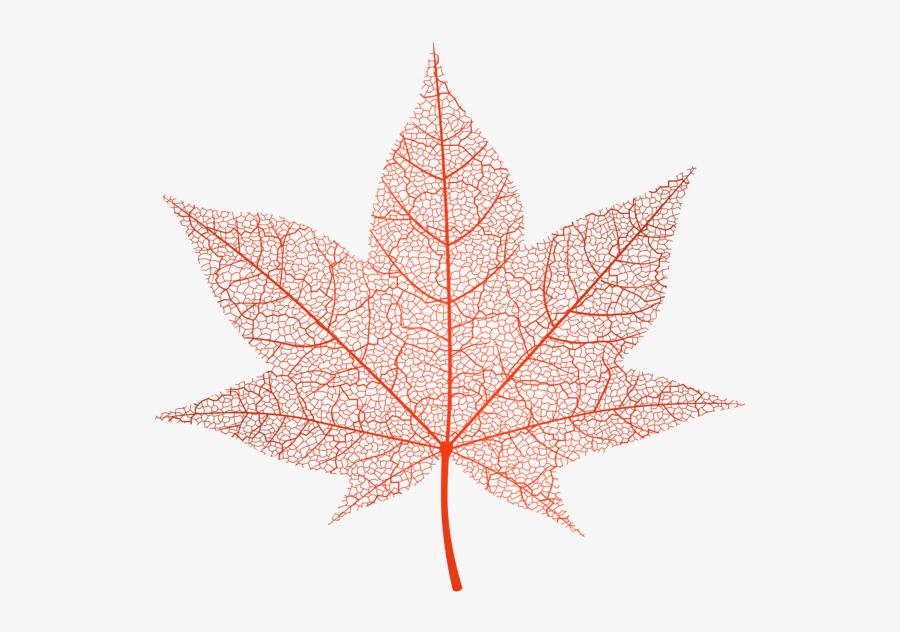 Transparent Autumn Png Clip - Transparent Background Leaves Png Autumn, Transparent Clipart