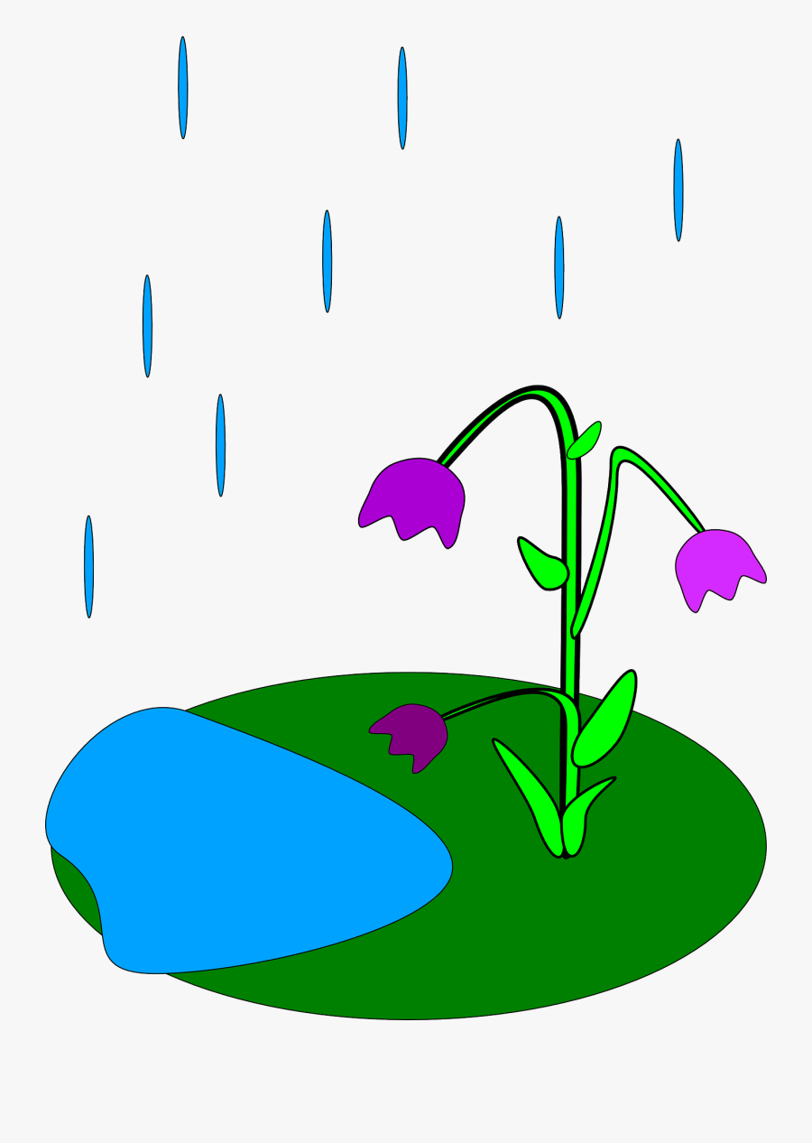 Gallery For April Showers Bring May Flowers Clip Art - Rain And Flowers Clipart, Transparent Clipart