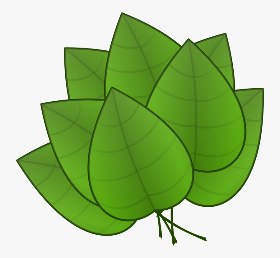 Pile Of Fall Leaves Clipart Free Clipart Images - Parts Of Plants Leaves, Transparent Clipart