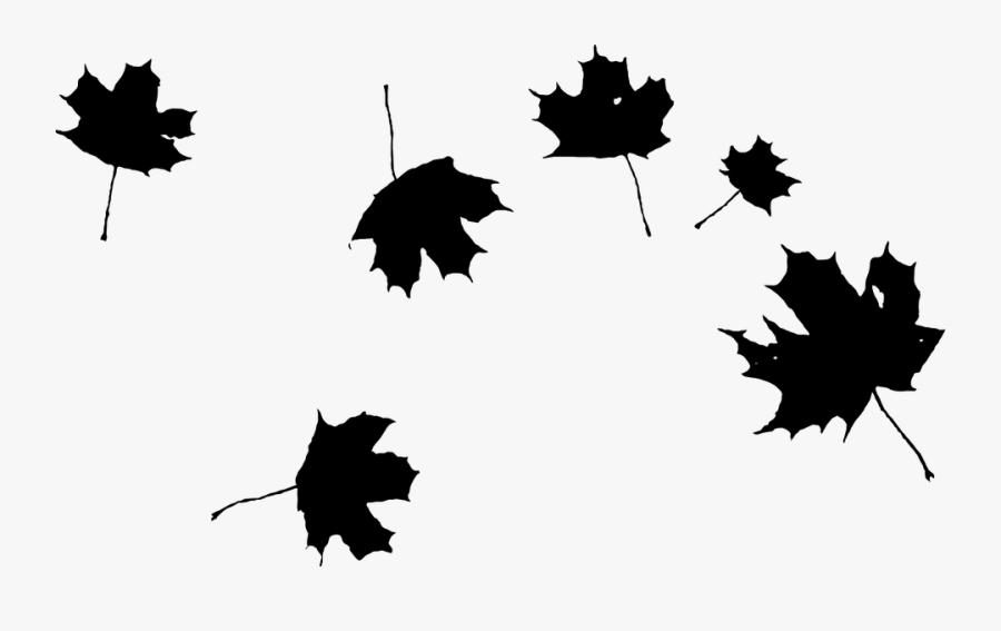 Picture Transparent Stock Autumn Png Transparent Maple - Falling Leaves Clipart Black And White, Transparent Clipart