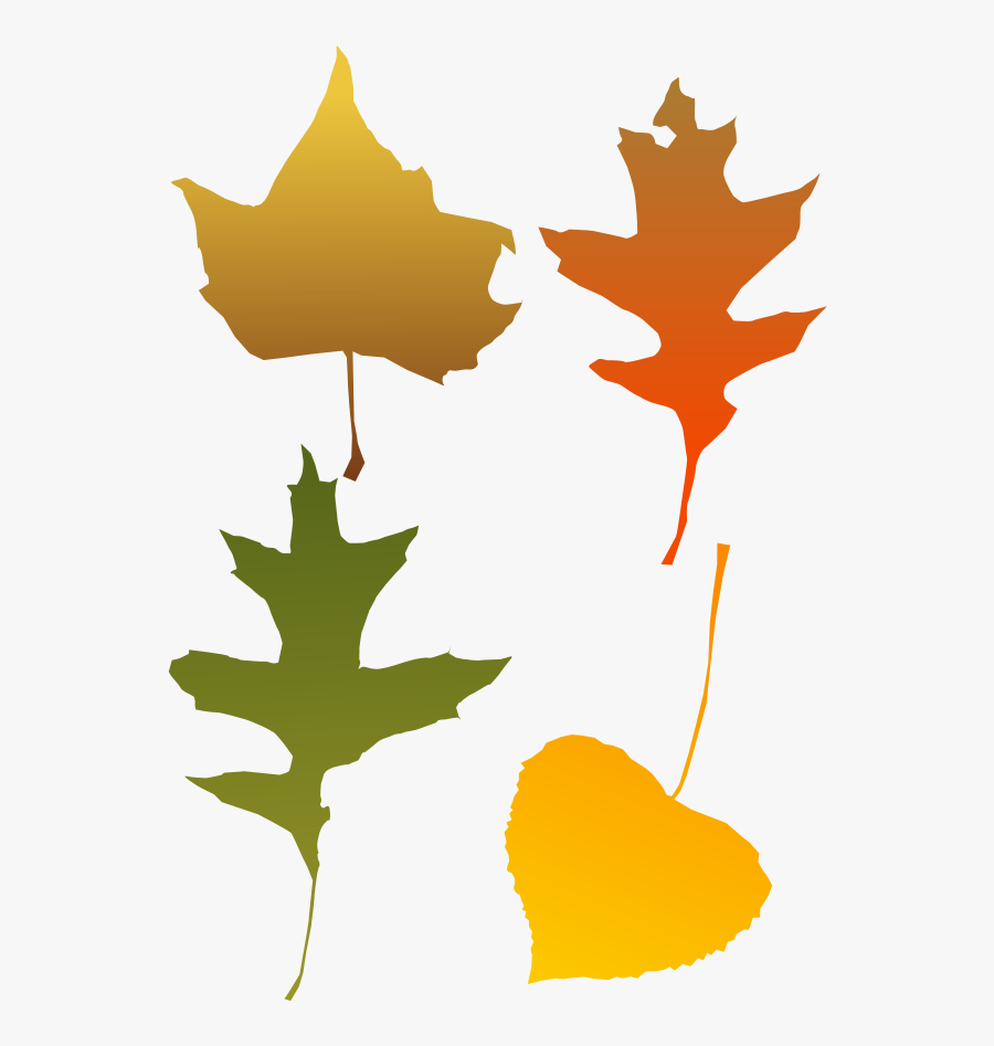 Clip Library Download Free Graphics Of Trees - Autumn Leaf Clip Art, Transparent Clipart