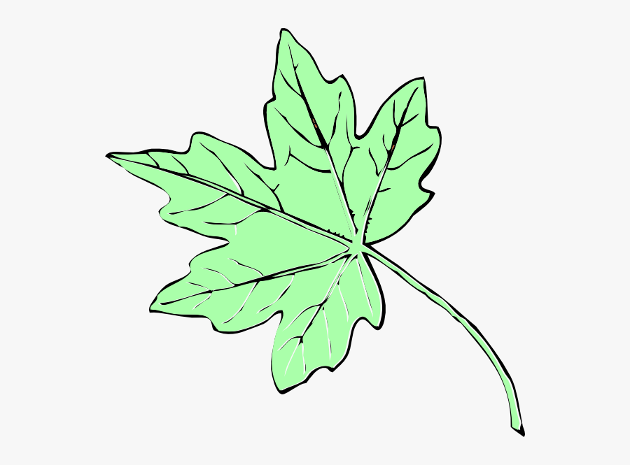 Light Green Maple Leaf Clip Art - Fall Leaves Clip Art, Transparent Clipart