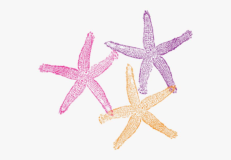 Starfish Clip Art Png, Transparent Clipart