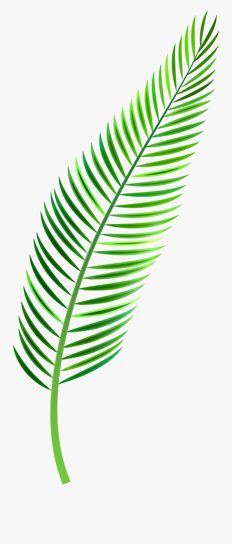 Palm Leaf Png Clip Art - Palm Leaf Clipart Png, Transparent Clipart