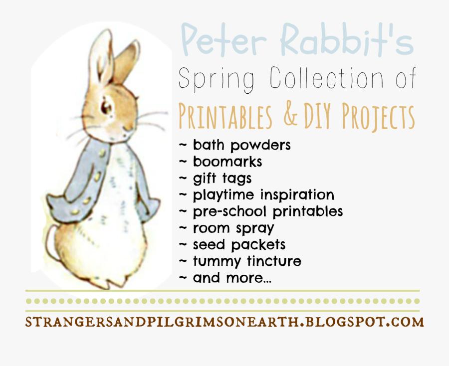 Strangers & Pilgrims On Earth - Diy Peter Rabbit, Transparent Clipart