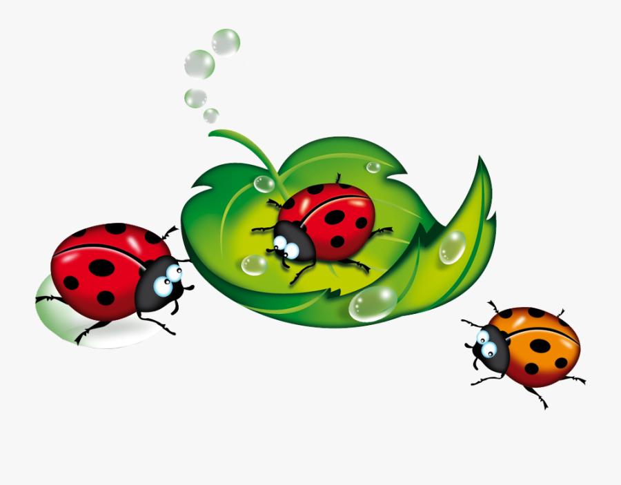 Ladybug Clipart Vintage - Клипарт Лето На Прозрачном Фоне, Transparent Clipart