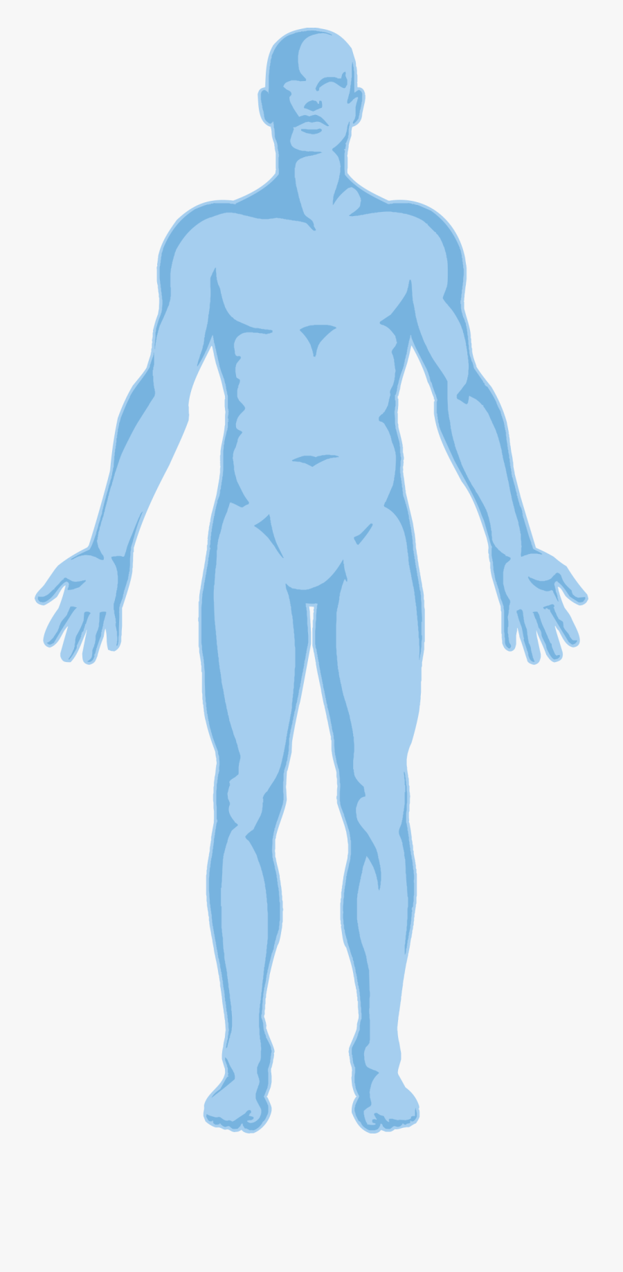 Body Outline Transparent Background - Human Body Outline Transparent Background, Transparent Clipart
