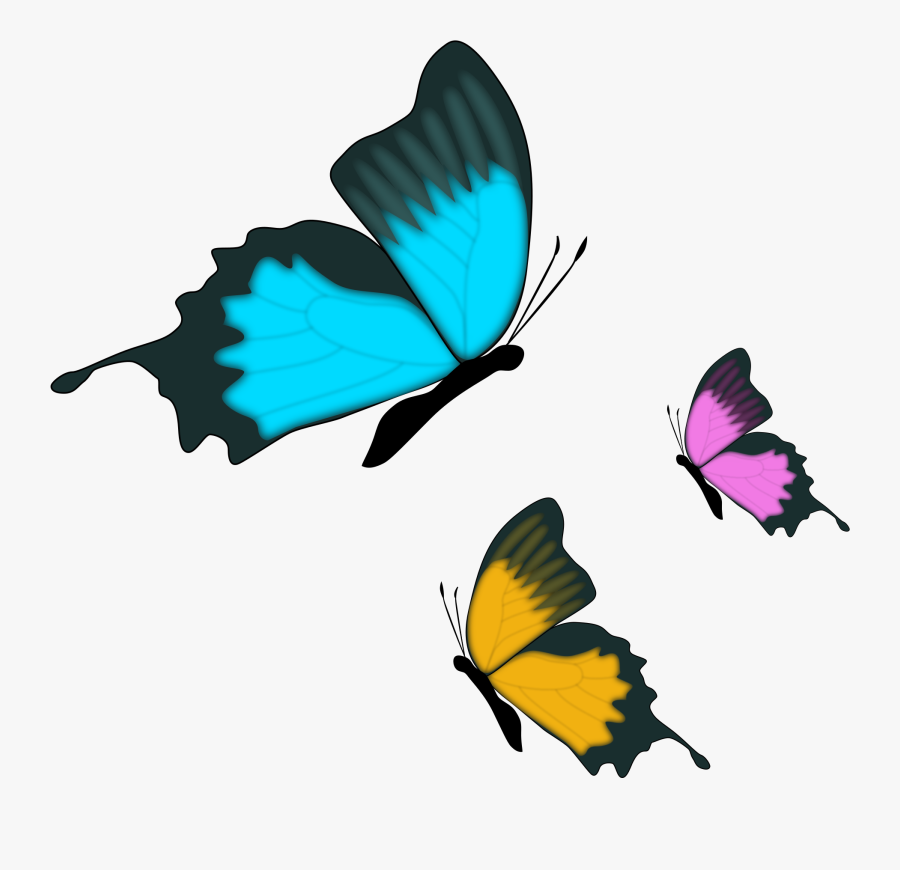 Download Belly And - Live Like A Butterfly Quotes, Transparent Clipart