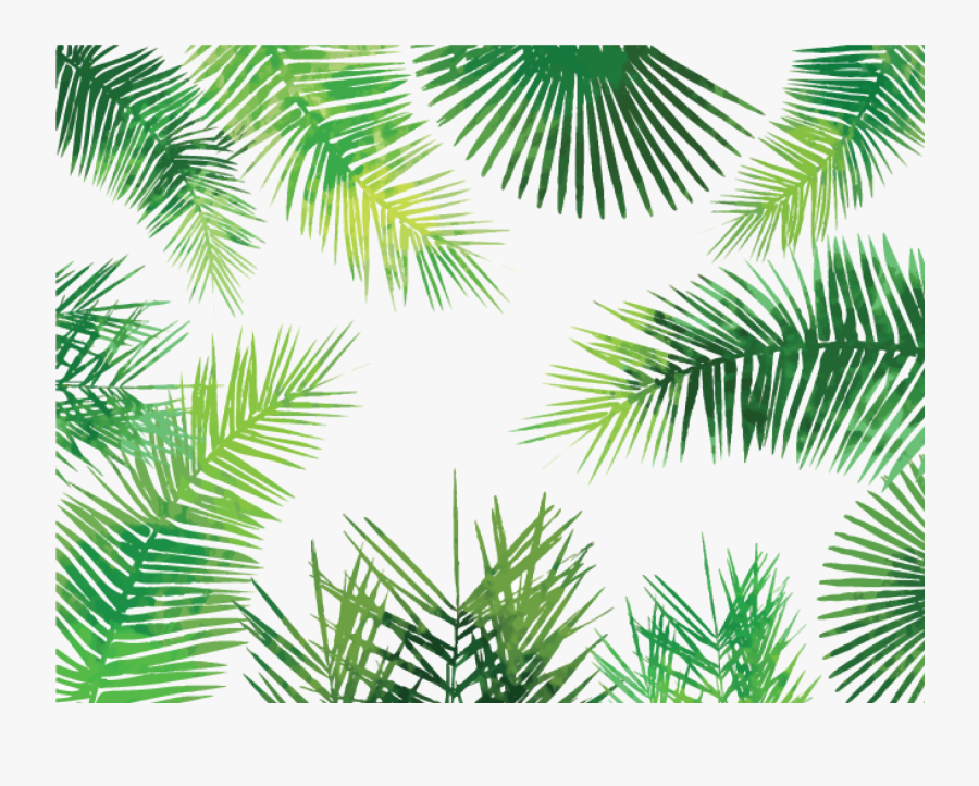 Clip Art Tropical Pattern Png - Palm Leaves Pattern Png, Transparent Clipart