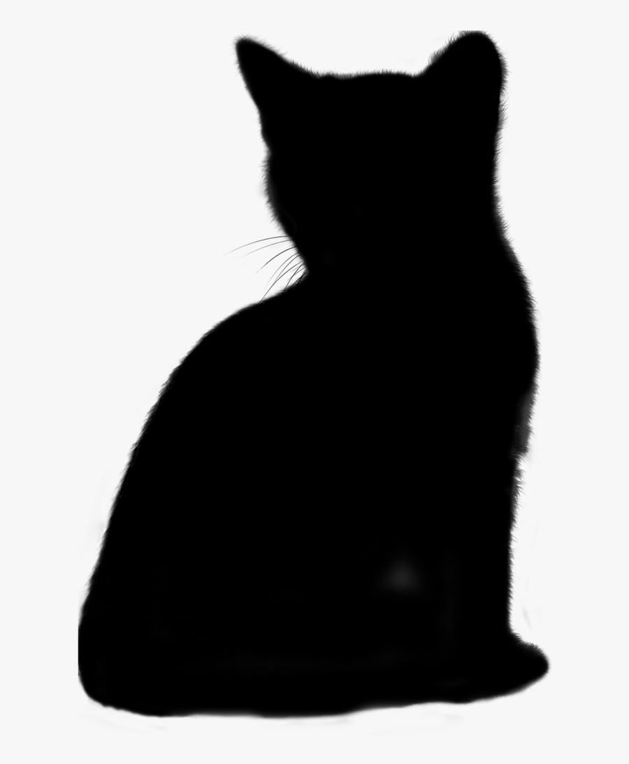 Cat Animal Silhouette Free Picture - Cat, Transparent Clipart