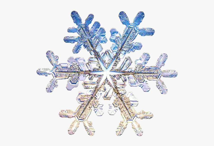 Snowflake Mathematics, Transparent Clipart