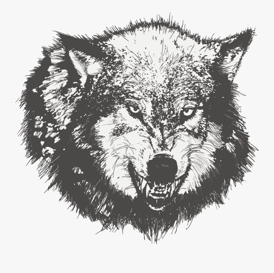 Transparent Dog Vector Png - Angry Face Wolf Drawing, Transparent Clipart