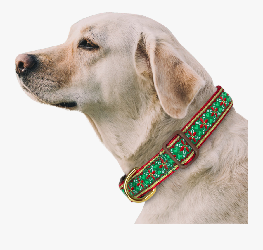 Morocco Flower Dog Collar With Bow Tie & Keychain Included - Lebra Dog Name Male, Transparent Clipart