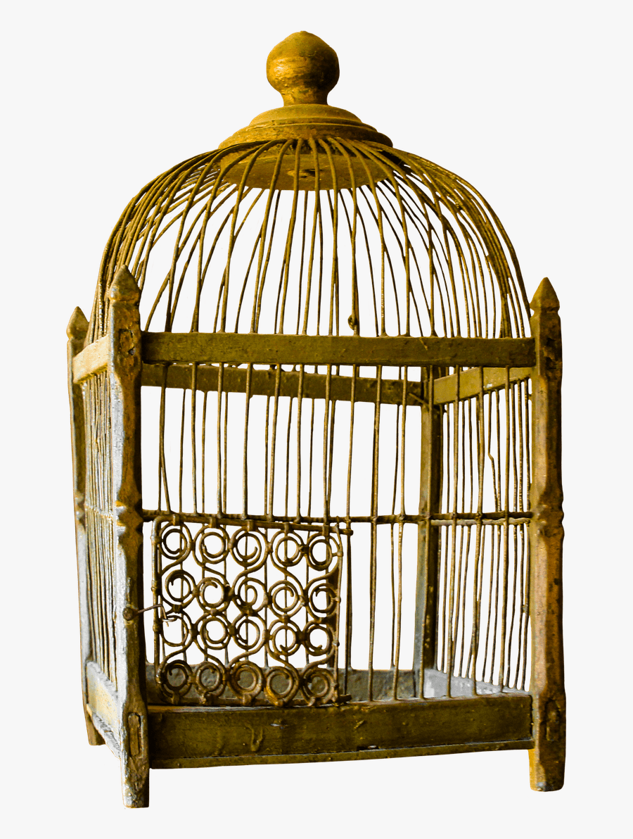 Bird Cage - Bird Cage And Cat, Transparent Clipart