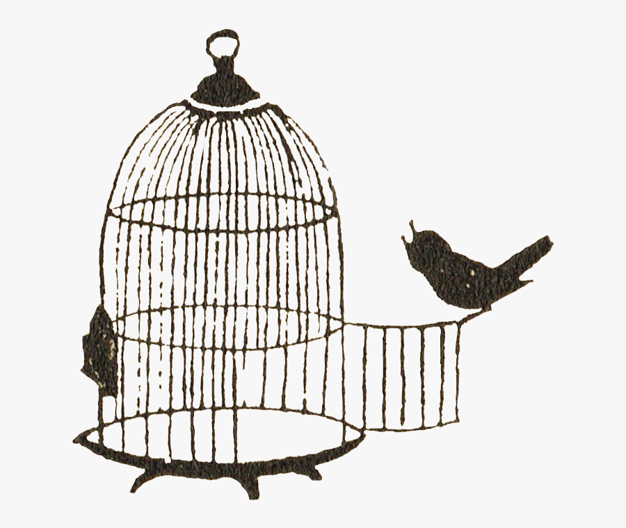 Birdcage Clip Art - Portable Network Graphics, Transparent Clipart