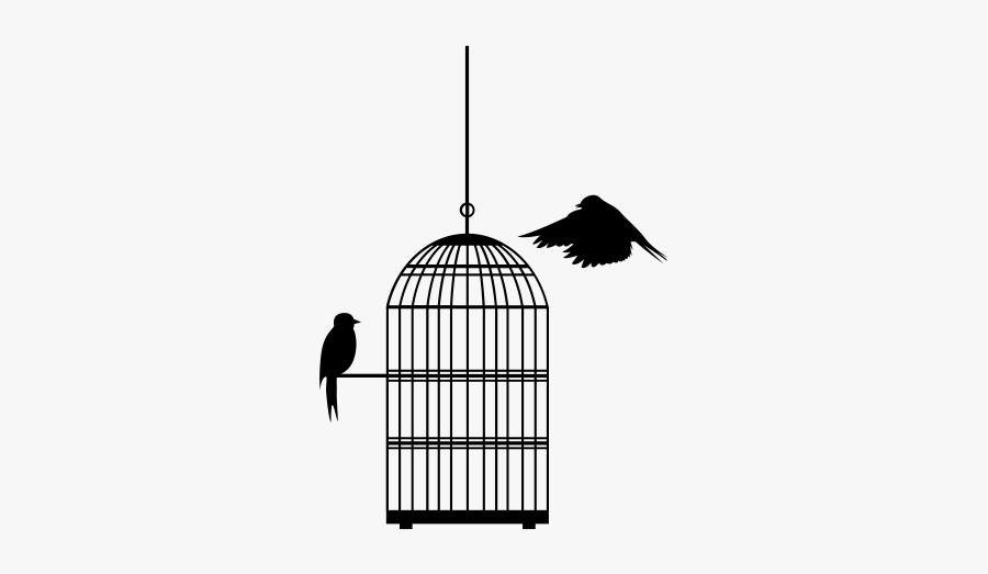 Cage, Transparent Clipart