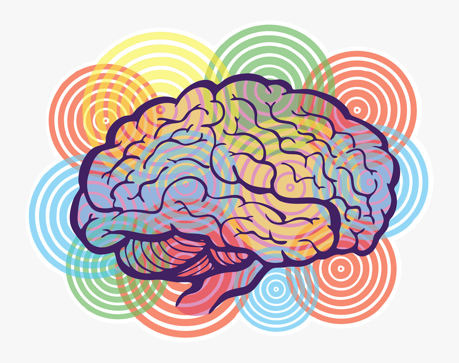 Collection Of Creative - Brain Creativity Png, Transparent Clipart