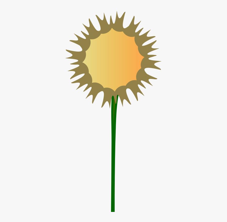 Stem Of Plant Clip Art, Transparent Clipart