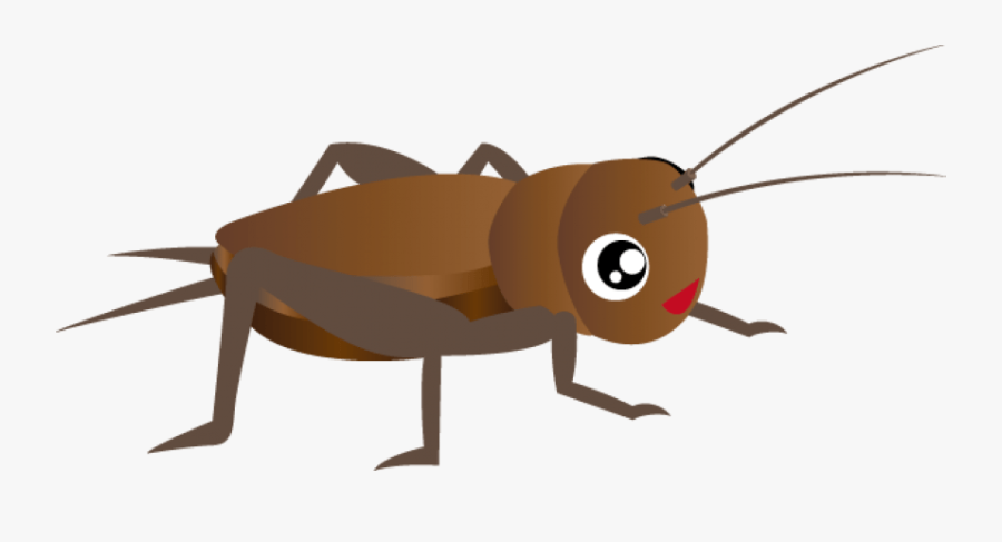 Cricket Clipart Png - Cricket Insect Clipart, Transparent Clipart