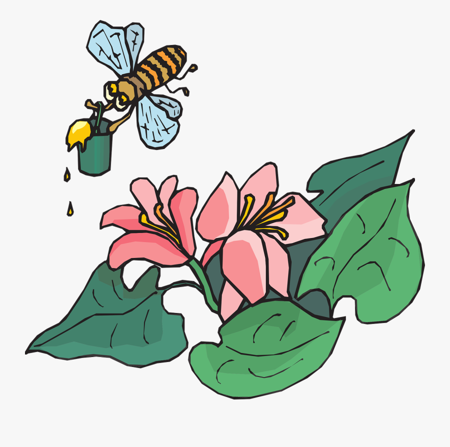 Bee Flying Insects - Drawn Flowers, Transparent Clipart