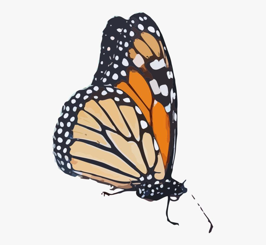 Monarch Butterfly Clipart Transparent Background - Monarch Butterfly Transparent Background, Transparent Clipart