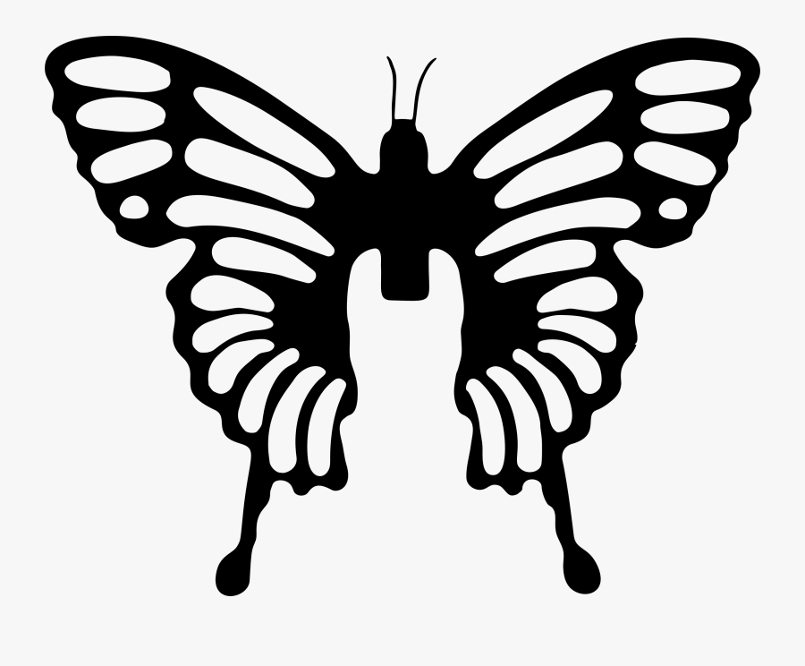 Symmetry,monochrome Photography,pollinator - Butterfly Brush Png, Transparent Clipart