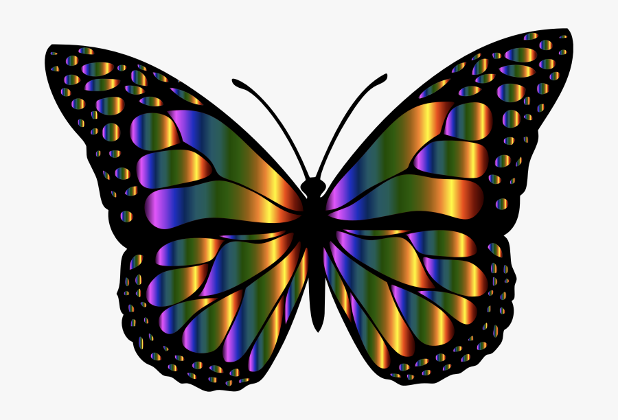 Monarch Butterfly 2 Variation - Rainbow Butterflies, Transparent Clipart
