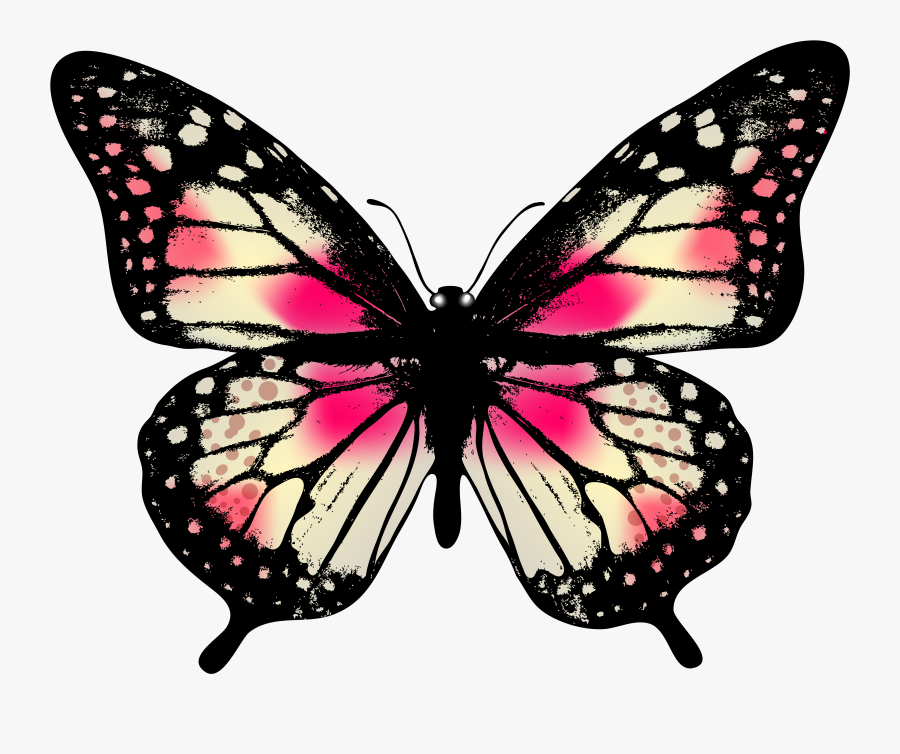 Real Life Pink Butterfly, Transparent Clipart